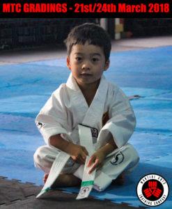 Martial arts mart coupon 2018