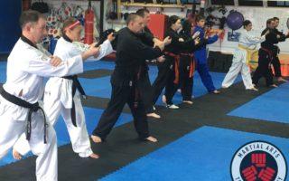 2019-04-06 MMA, BJJ & Weapons Seminar - Martial Arts Training Company